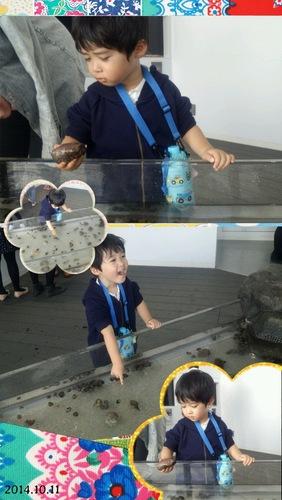 20141015_くらげ水族館1.jpg